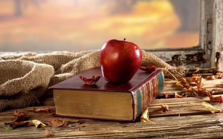 2016考研英语备考应避免三大误区