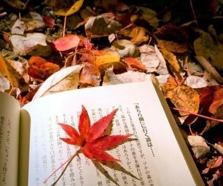 2016考研英语备考