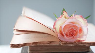 2017年考研英语作文话题常用短语(五)